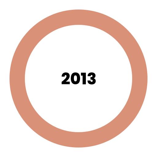 Výsledky roku 2013